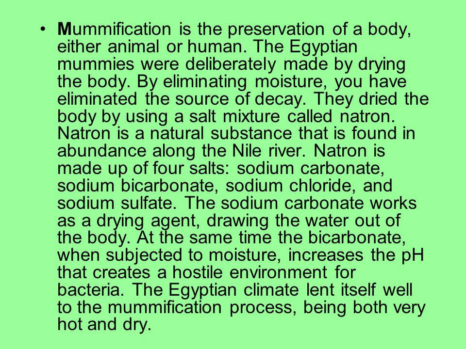 Mummification is the preservation of a body, either animal or human. The Egyptian mummies were deliberately made by drying the body. By eliminating mo