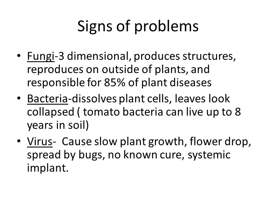Signs of problems Fungi-3 dimensional, produces structures, reproduces on outside of plants, and responsible for 85% of plant diseases Bacteria-dissolves plant cells, leaves look collapsed ( tomato bacteria can live up to 8 years in soil) Virus- Cause slow plant growth, flower drop, spread by bugs, no known cure, systemic implant.
