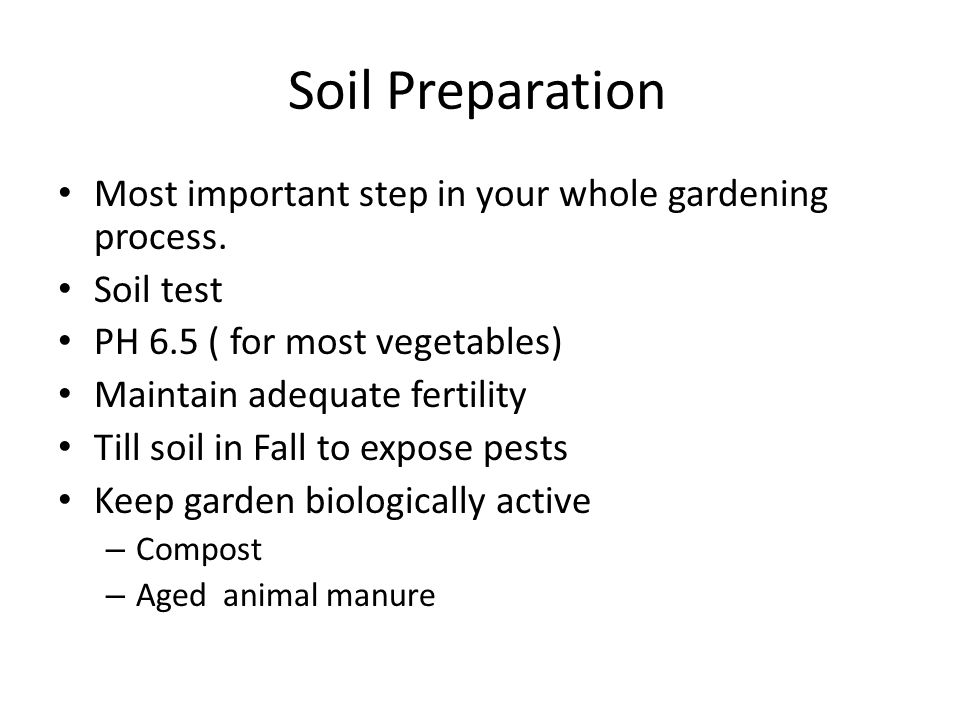 Soil Preparation Most important step in your whole gardening process.