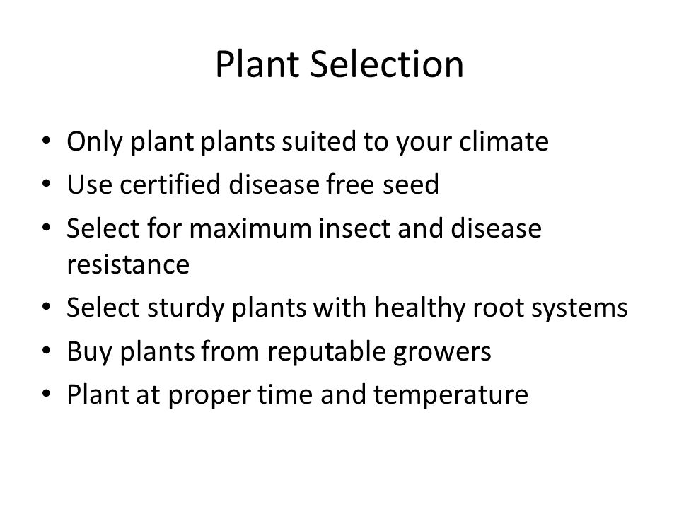 Plant Selection Only plant plants suited to your climate Use certified disease free seed Select for maximum insect and disease resistance Select sturdy plants with healthy root systems Buy plants from reputable growers Plant at proper time and temperature
