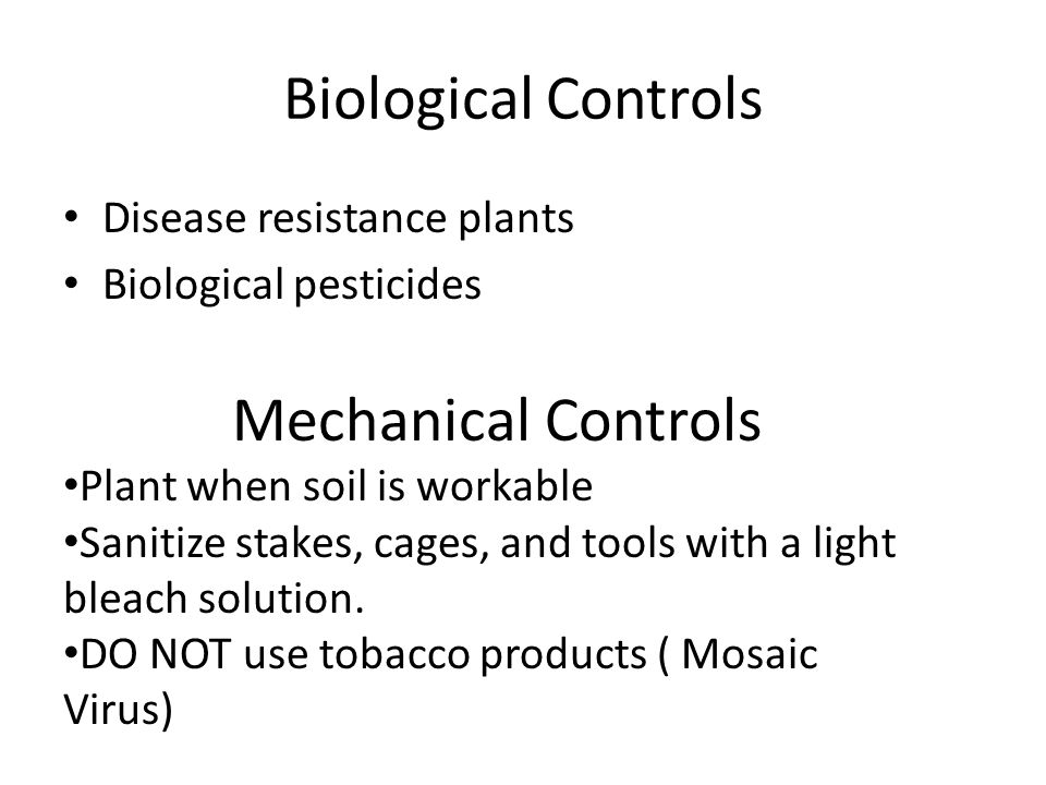 Biological Controls Disease resistance plants Biological pesticides Mechanical Controls Plant when soil is workable Sanitize stakes, cages, and tools with a light bleach solution.