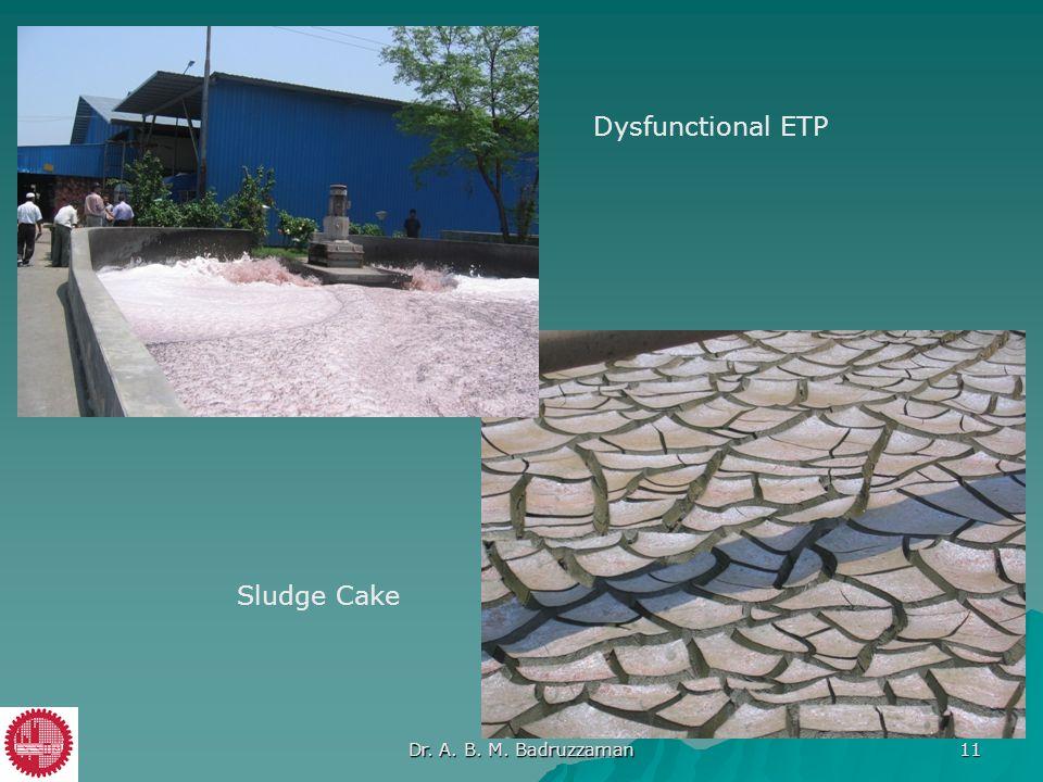 Sludge Cake Dysfunctional ETP Dr. A. B. M. Badruzzaman 11