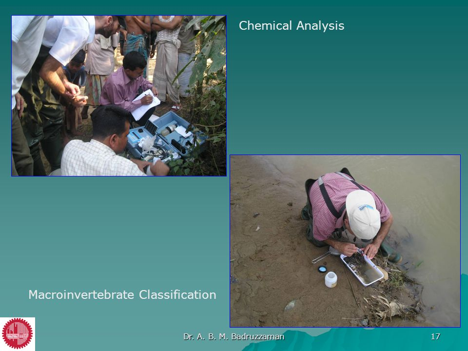 Chemical Analysis Macroinvertebrate Classification Dr. A. B. M. Badruzzaman 17