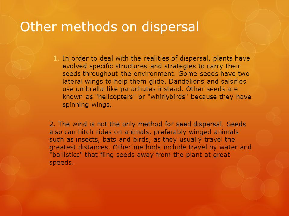 Other methods on dispersal 1.In order to deal with the realities of dispersal, plants have evolved specific structures and strategies to carry their s