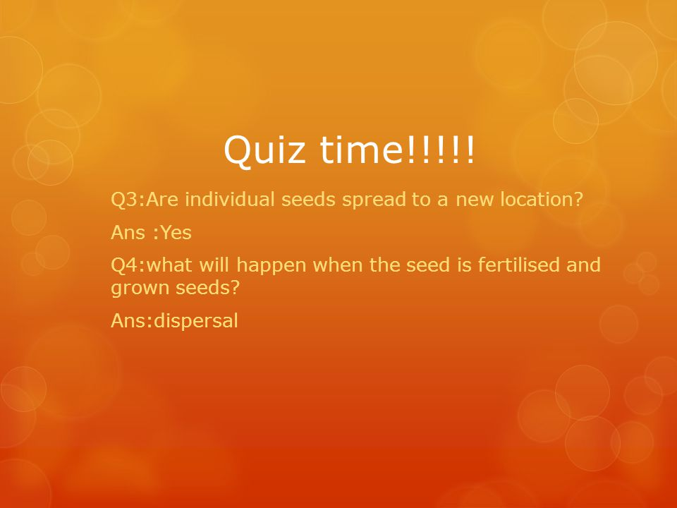 Q3:Are individual seeds spread to a new location? Ans :Yes Q4:what will happen when the seed is fertilised and grown seeds? Ans:dispersal