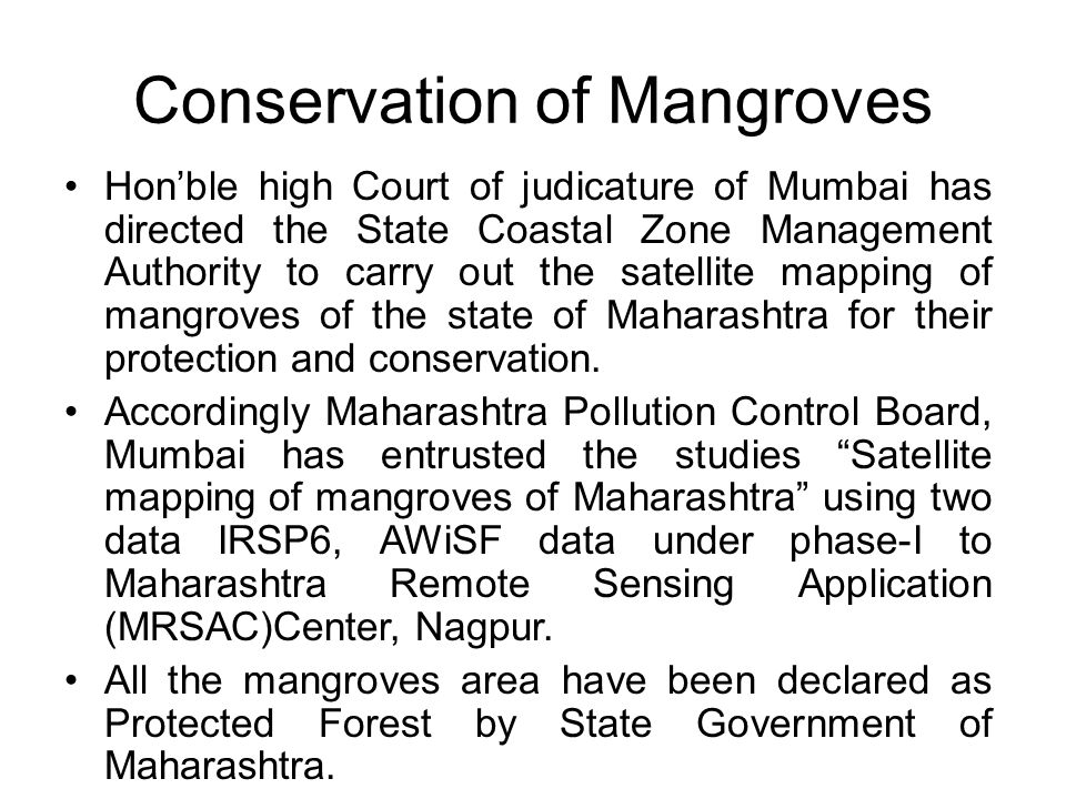 Conservation of Mangroves Hon'ble high Court of judicature of Mumbai has directed the State Coastal Zone Management Authority to carry out the satellite mapping of mangroves of the state of Maharashtra for their protection and conservation.