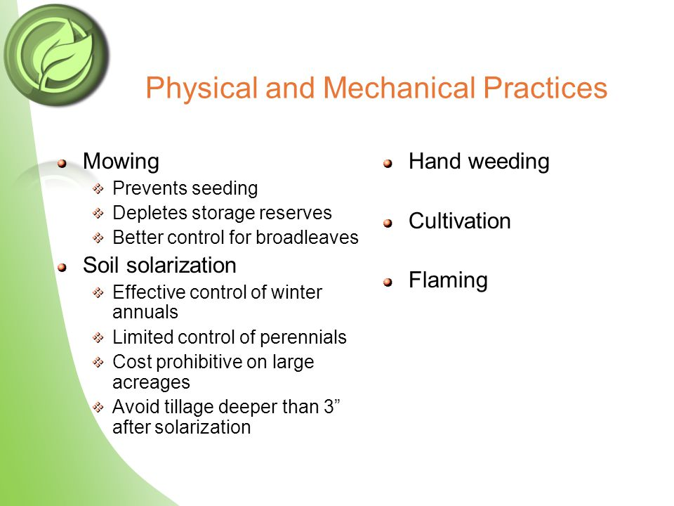 Physical and Mechanical Practices Mowing Prevents seeding Depletes storage reserves Better control for broadleaves Soil solarization Effective control of winter annuals Limited control of perennials Cost prohibitive on large acreages Avoid tillage deeper than 3 after solarization Hand weeding Cultivation Flaming