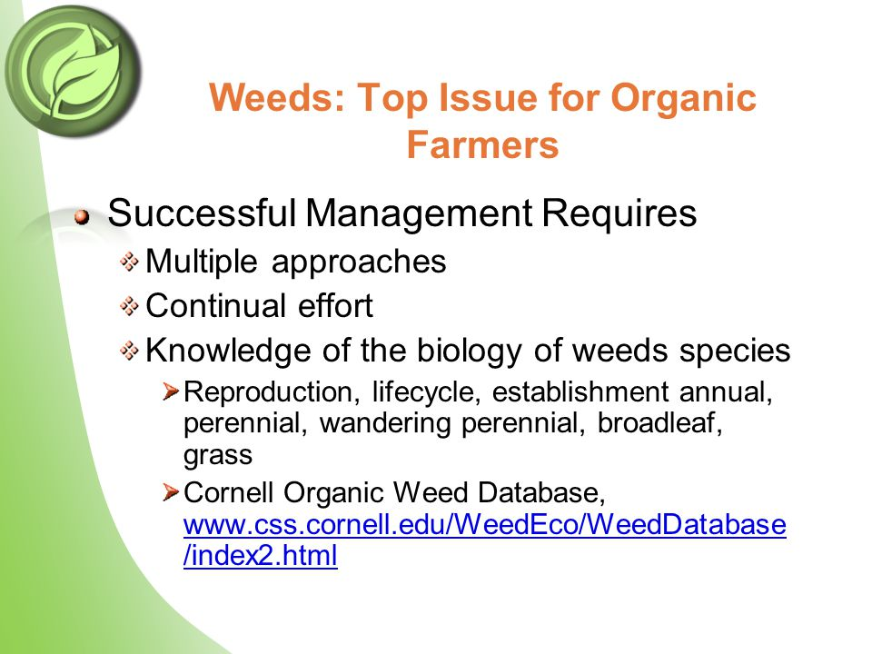 Weeds: Top Issue for Organic Farmers Successful Management Requires Multiple approaches Continual effort Knowledge of the biology of weeds species Rep