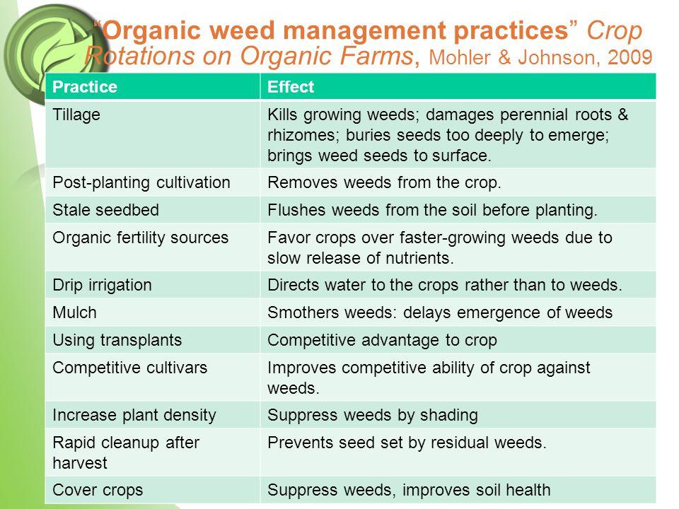 Preventive (Cultural) Practices Step 5.Grow vigorous, competitive crops.