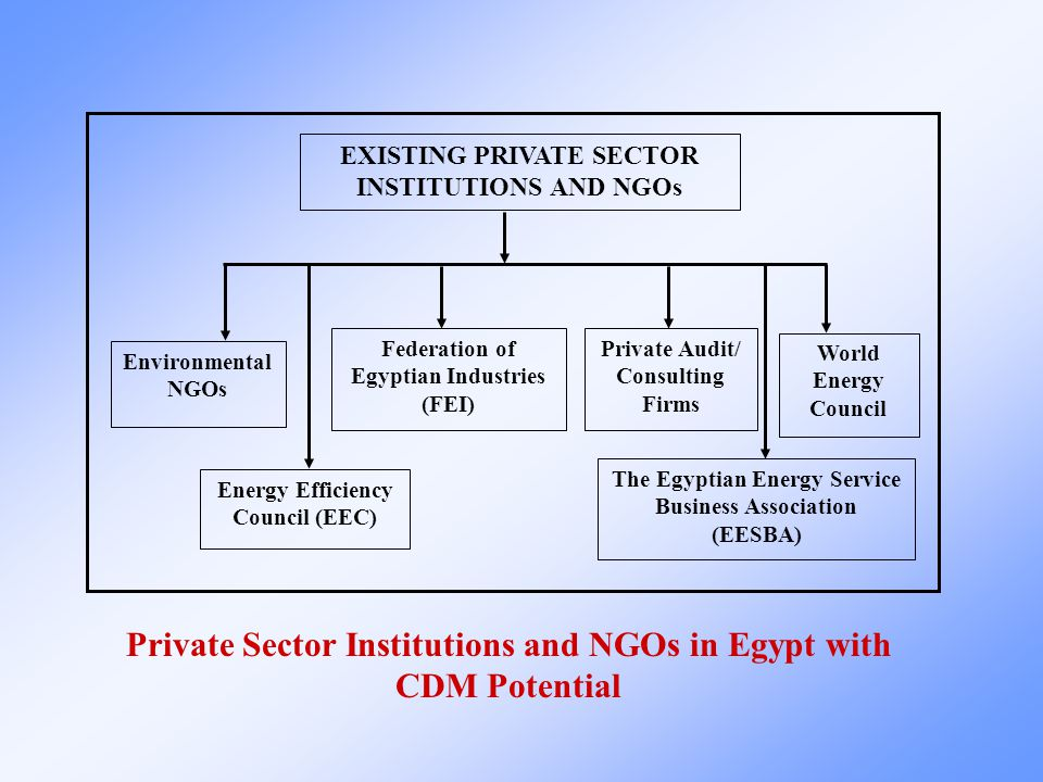 World Energy Council Environmental NGOs EXISTING PRIVATE SECTOR INSTITUTIONS AND NGOs Energy Efficiency Council (EEC) Federation of Egyptian Industries (FEI) The Egyptian Energy Service Business Association (EESBA) Private Audit/ Consulting Firms Private Sector Institutions and NGOs in Egypt with CDM Potential