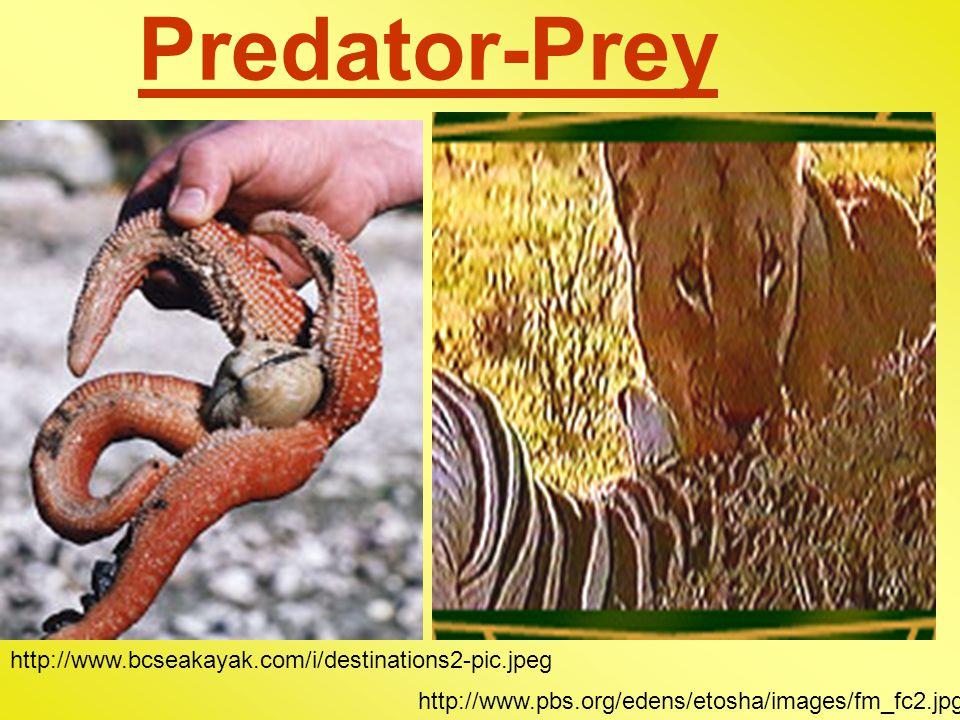 Predator-Prey http://www.bcseakayak.com/i/destinations2-pic.jpeg http://www.pbs.org/edens/etosha/images/fm_fc2.jpg