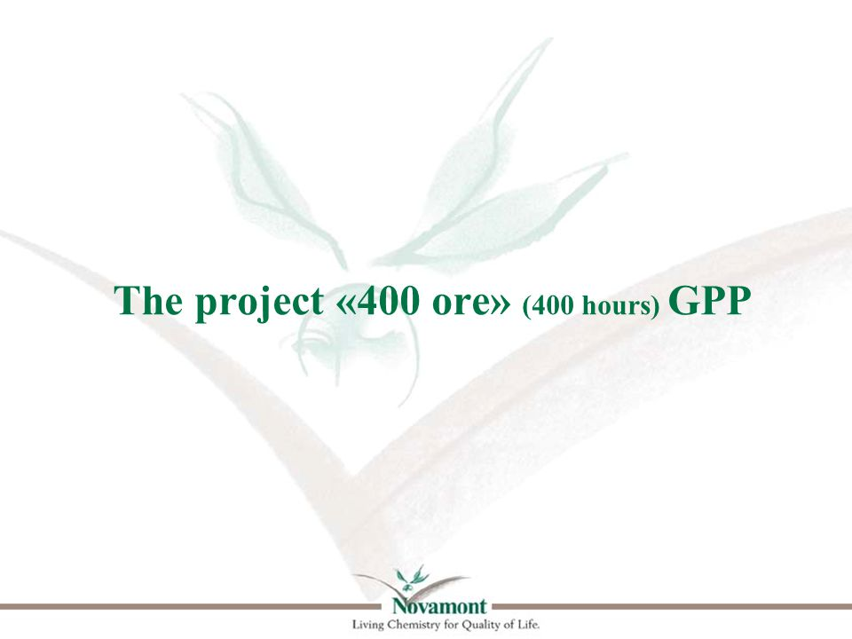 The project «400 ore» (400 hours) GPP