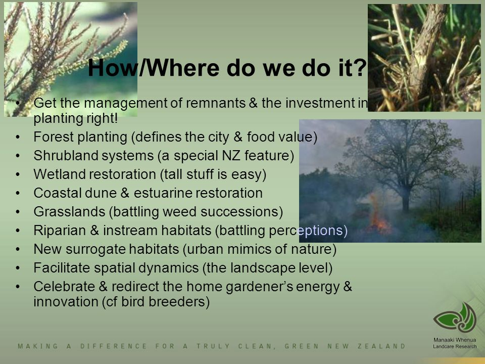 How/Where do we do it? Get the management of remnants & the investment in planting right! Forest planting (defines the city & food value) Shrubland sy