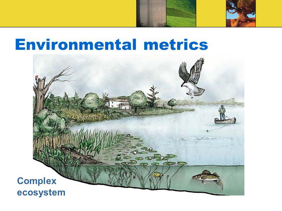 Environmental metrics Complex ecosystem