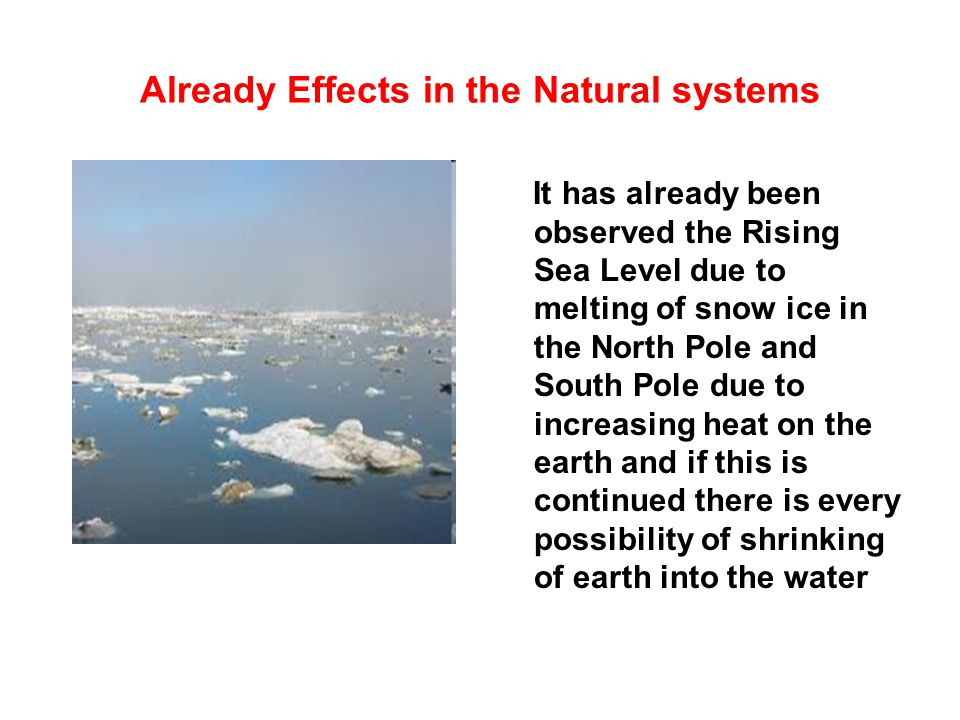 Already Effects in the Natural systems It has already been observed the Rising Sea Level due to melting of snow ice in the North Pole and South Pole d