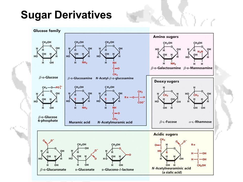 Sugar Derivatives
