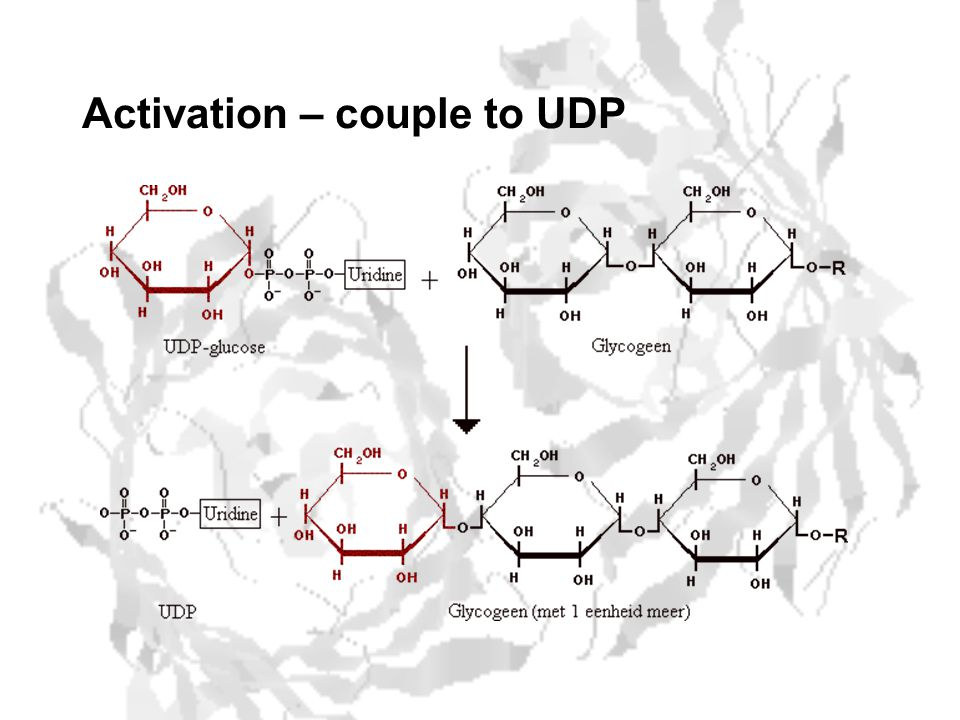 Activation – couple to UDP