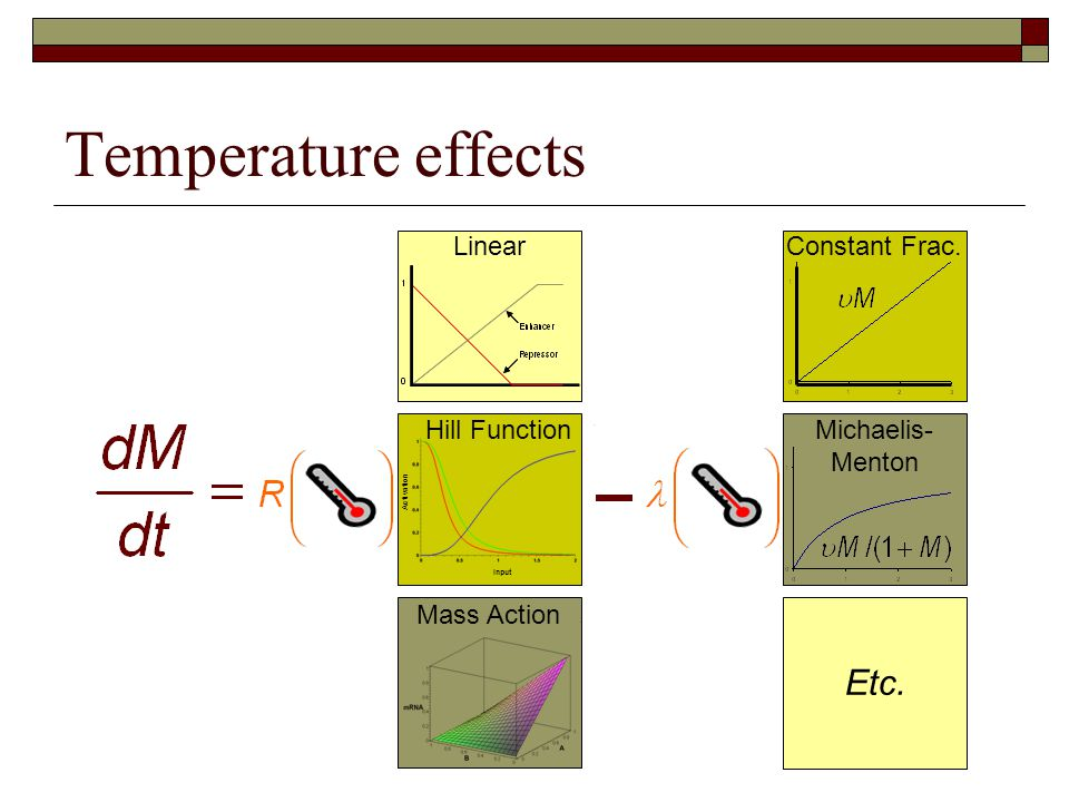 Temperature effects Input Activation Hill Function Linear Mass Action Michaelis- Menton Etc. Constant Frac.