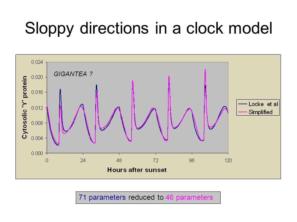 Sloppy directions in a clock model GIGANTEA 71 parameters reduced to 46 parameters