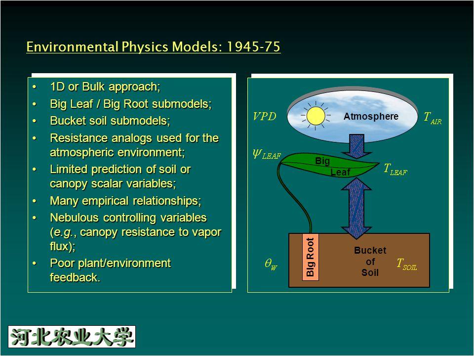 Environmental Physics Models: 1945-75 1D or Bulk approach;1D or Bulk approach; Big Leaf / Big Root submodels;Big Leaf / Big Root submodels; Bucket soi