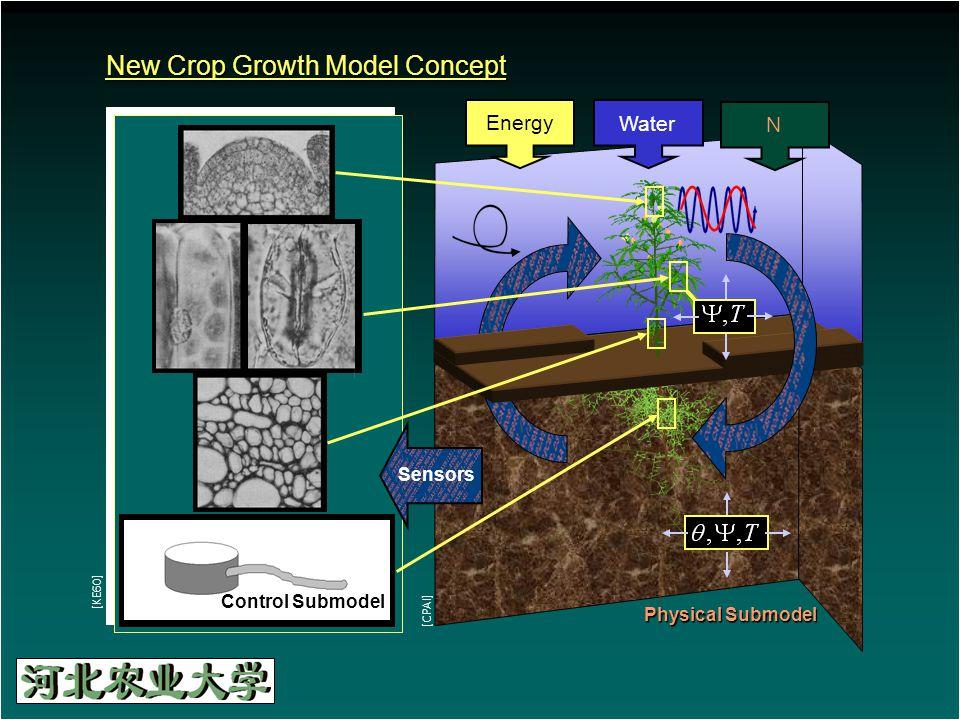 New Crop Growth Model Concept Energy Water N Physical Submodel [CPAI] [KE60] Sensors Control Submodel