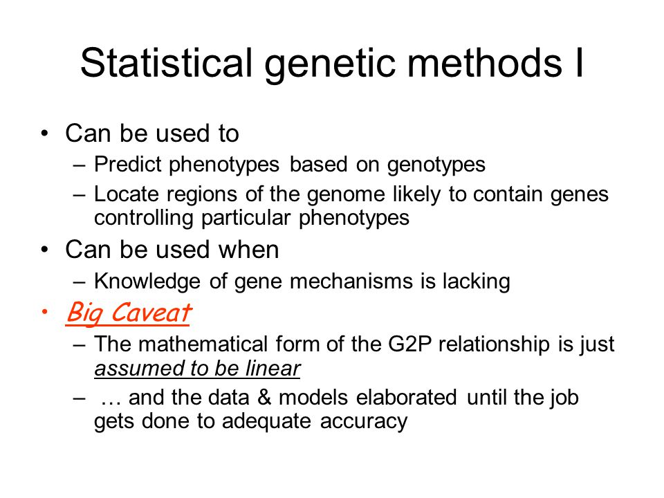 Statistical genetic methods I Can be used to –Predict phenotypes based on genotypes –Locate regions of the genome likely to contain genes controlling particular phenotypes Can be used when –Knowledge of gene mechanisms is lacking Big Caveat –The mathematical form of the G2P relationship is just assumed to be linear – … and the data & models elaborated until the job gets done to adequate accuracy