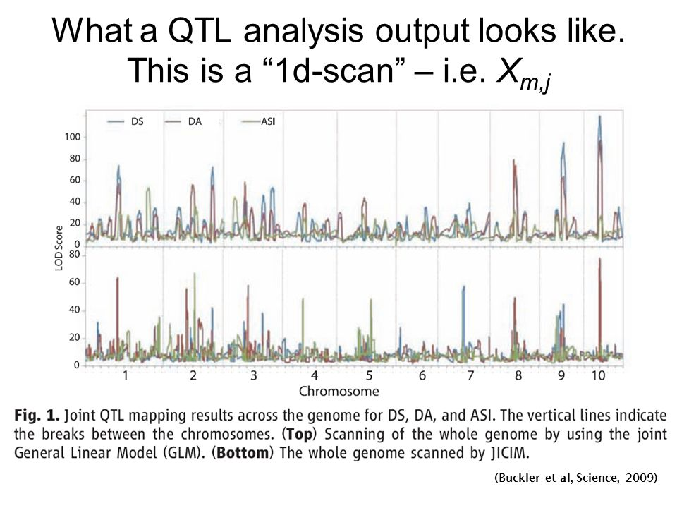 What a QTL analysis output looks like.This is a 1d-scan – i.e.