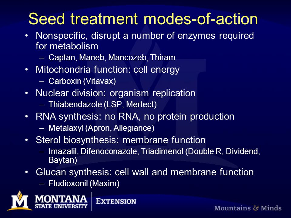 Seed treatment modes-of-action Nonspecific, disrupt a number of enzymes required for metabolism –Captan, Maneb, Mancozeb, Thiram Mitochondria function