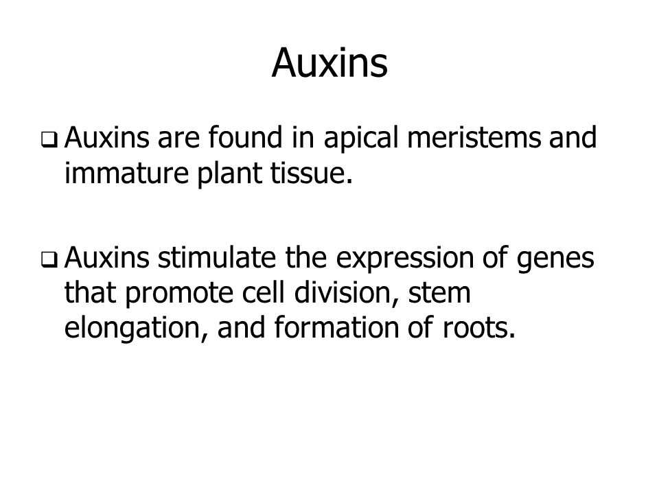 Auxins  Auxins are found in apical meristems and immature plant tissue.  Auxins stimulate the expression of genes that promote cell division, stem e