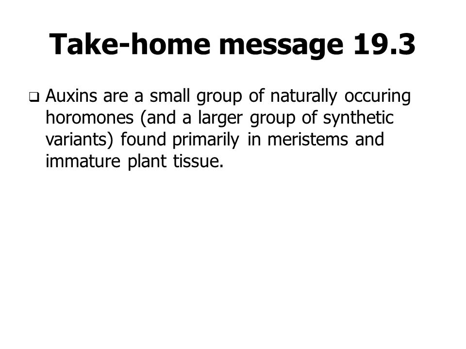 Take-home message 19.3  Auxins are a small group of naturally occuring horomones (and a larger group of synthetic variants) found primarily in merist