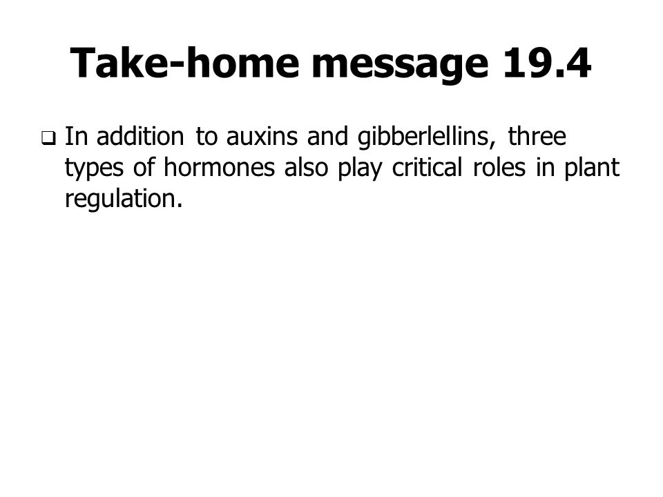 Take-home message 19.4  In addition to auxins and gibberlellins, three types of hormones also play critical roles in plant regulation.