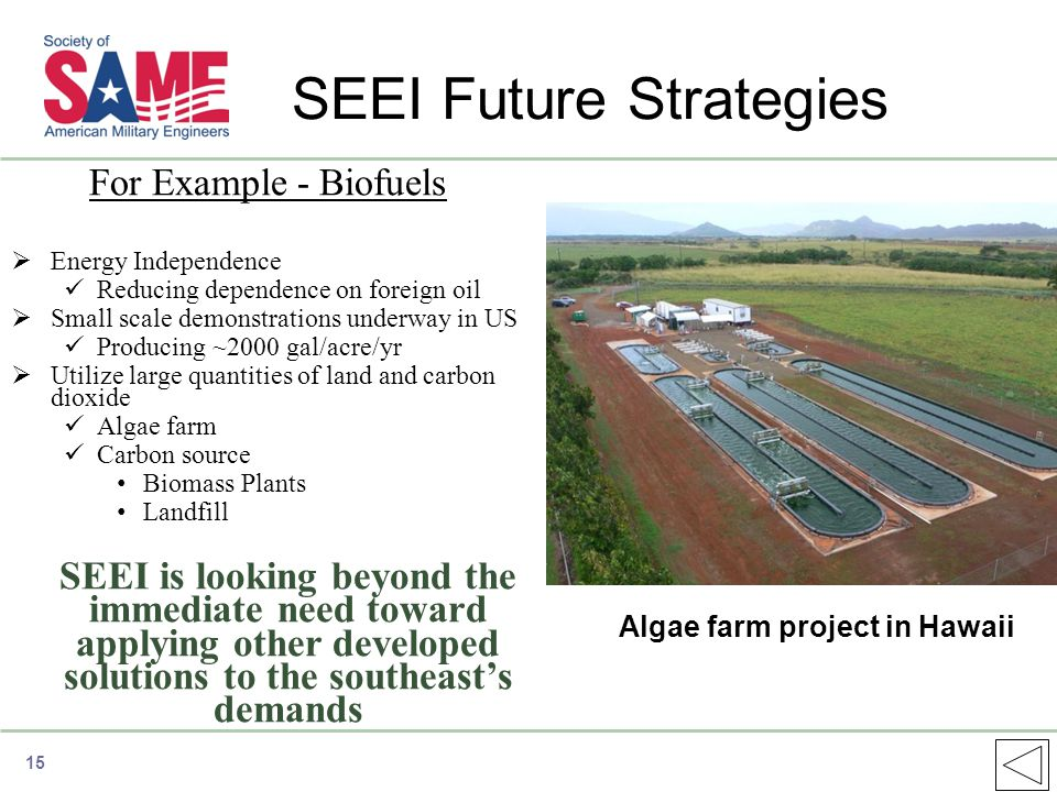 SEEI Future Strategies For Example - Biofuels  Energy Independence Reducing dependence on foreign oil  Small scale demonstrations underway in US Producing ~2000 gal/acre/yr  Utilize large quantities of land and carbon dioxide Algae farm Carbon source Biomass Plants Landfill SEEI is looking beyond the immediate need toward applying other developed solutions to the southeast's demands Algae farm project in Hawaii 15
