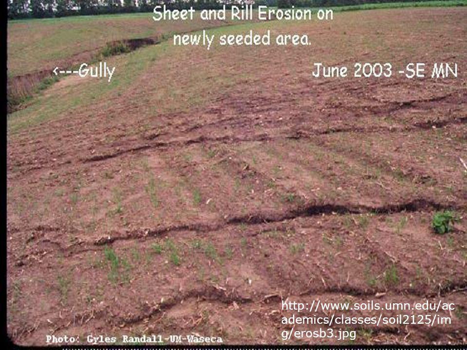 http://www.soils.umn.edu/ac ademics/classes/soil2125/im g/erosb3.jpg