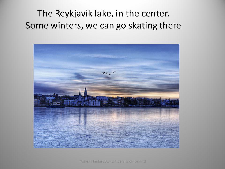 The Reykjavík lake, in the center. Some winters, we can go skating there Þórleif Hjartardóttir University of Iceland