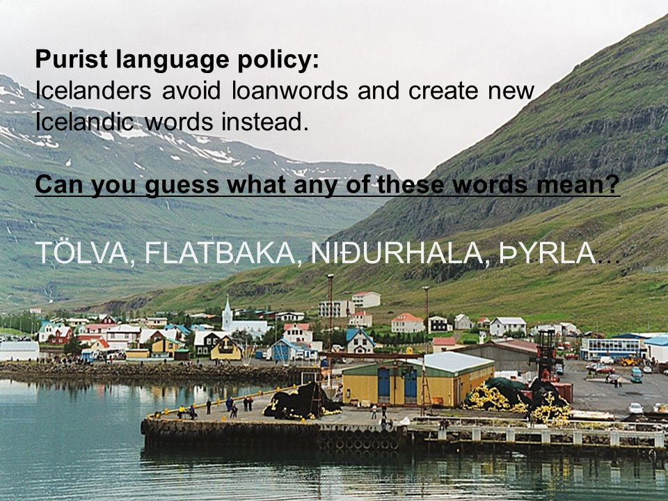 Purist language policy: Icelanders avoid loanwords and create new Icelandic words instead. Can you guess what any of these words mean? TÖLVA, FLATBAKA