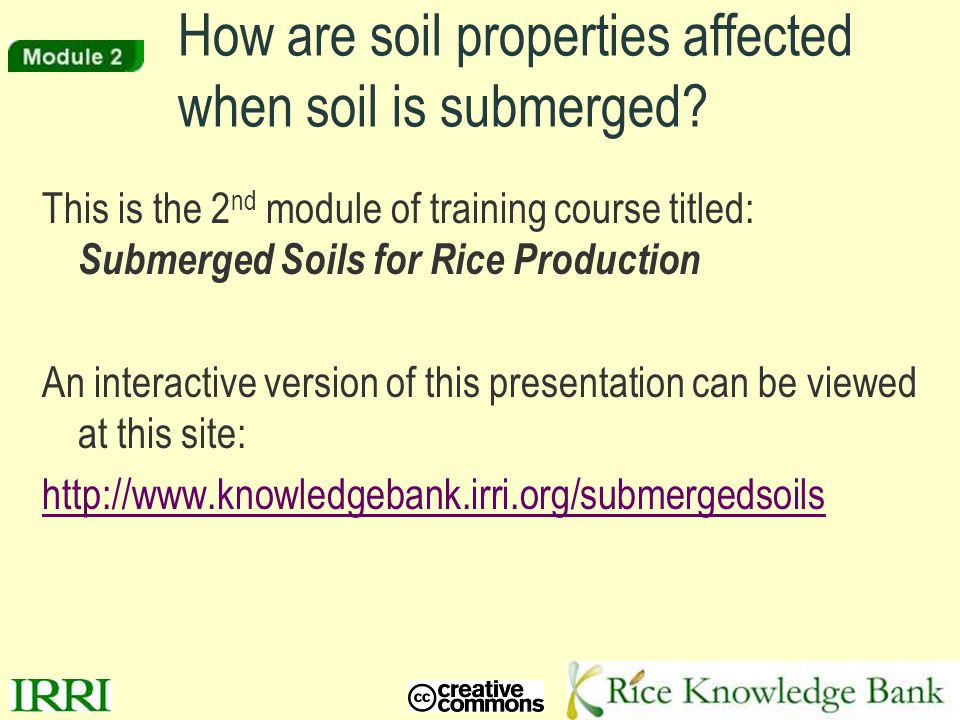 2 Intro to Module 2 While most soil is exposed to air, much of the world's population depends on a crop grown in soil submerged by a layer of water.
