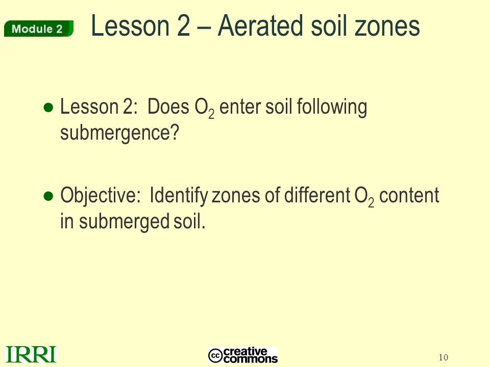 10 Lesson 2 – Aerated soil zones ●Lesson 2: Does O 2 enter soil following submergence? ●Objective: Identify zones of different O 2 content in submerge
