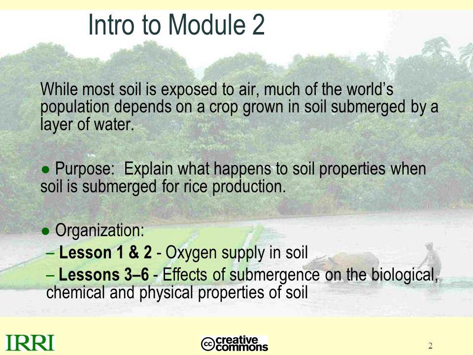 13 Lesson 2 - Oxygen moves through porous tissue of aquatic plants 1.