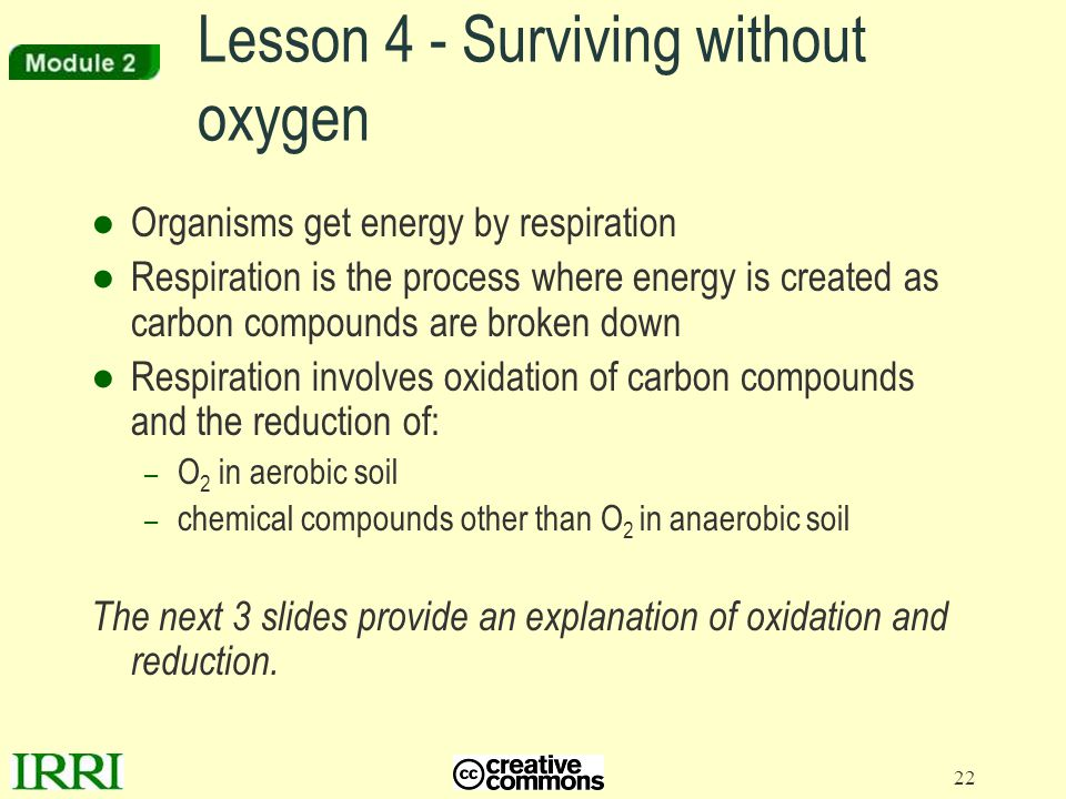 22 Lesson 4 - Surviving without oxygen ●Organisms get energy by respiration ●Respiration is the process where energy is created as carbon compounds ar