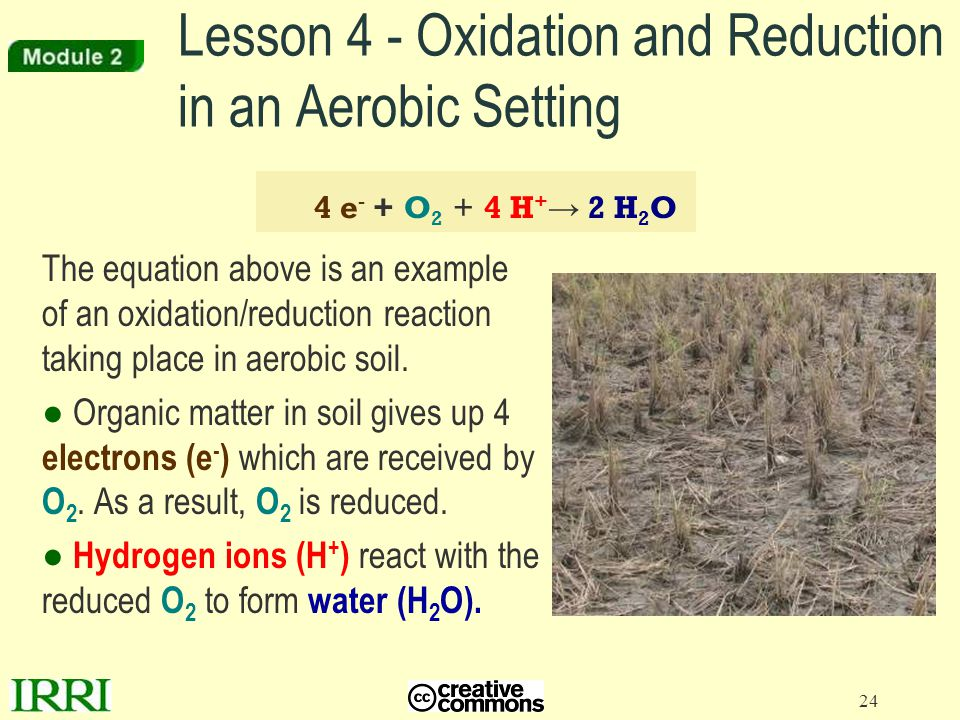 24 Lesson 4 - Oxidation and Reduction in an Aerobic Setting The equation above is an example of an oxidation/reduction reaction taking place in aerobi