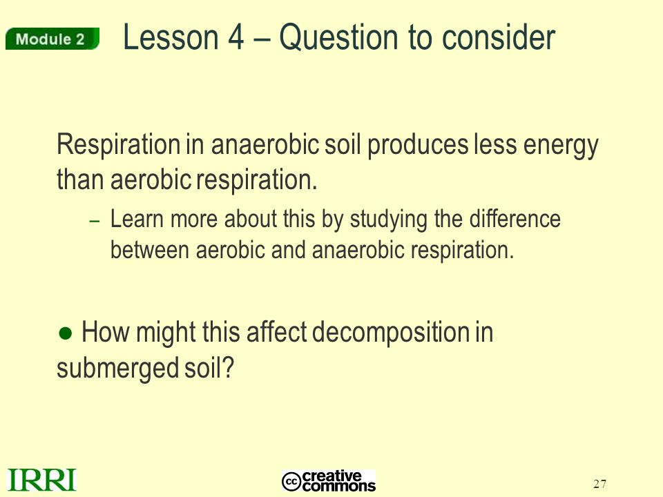 27 Lesson 4 – Question to consider Respiration in anaerobic soil produces less energy than aerobic respiration. – Learn more about this by studying th
