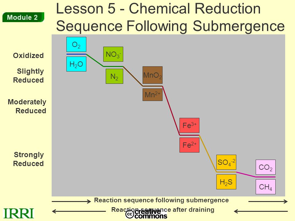 Reaction sequence following submergence Reaction sequence after draining Lesson 5 - Chemical Reduction Sequence Following Submergence O2O2 N2N2 Mn 2+