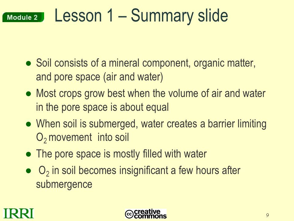 10 Lesson 2 – Aerated soil zones ●Lesson 2: Does O 2 enter soil following submergence.