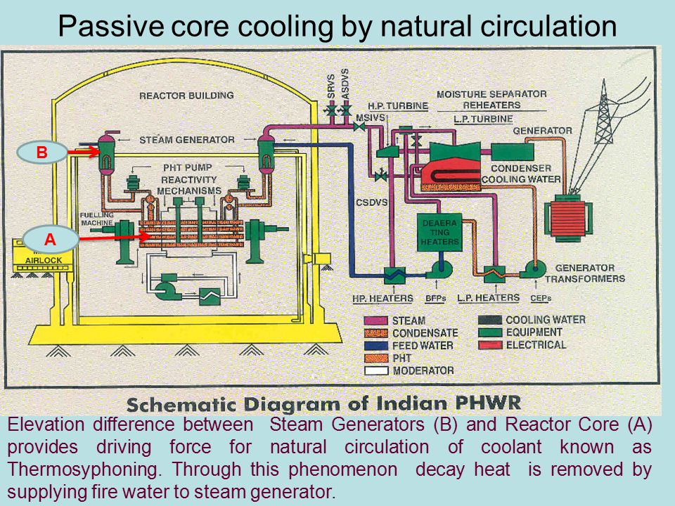 Passive core cooling by natural circulation A B Elevation difference between Steam Generators (B) and Reactor Core (A) provides driving force for natural circulation of coolant known as Thermosyphoning.