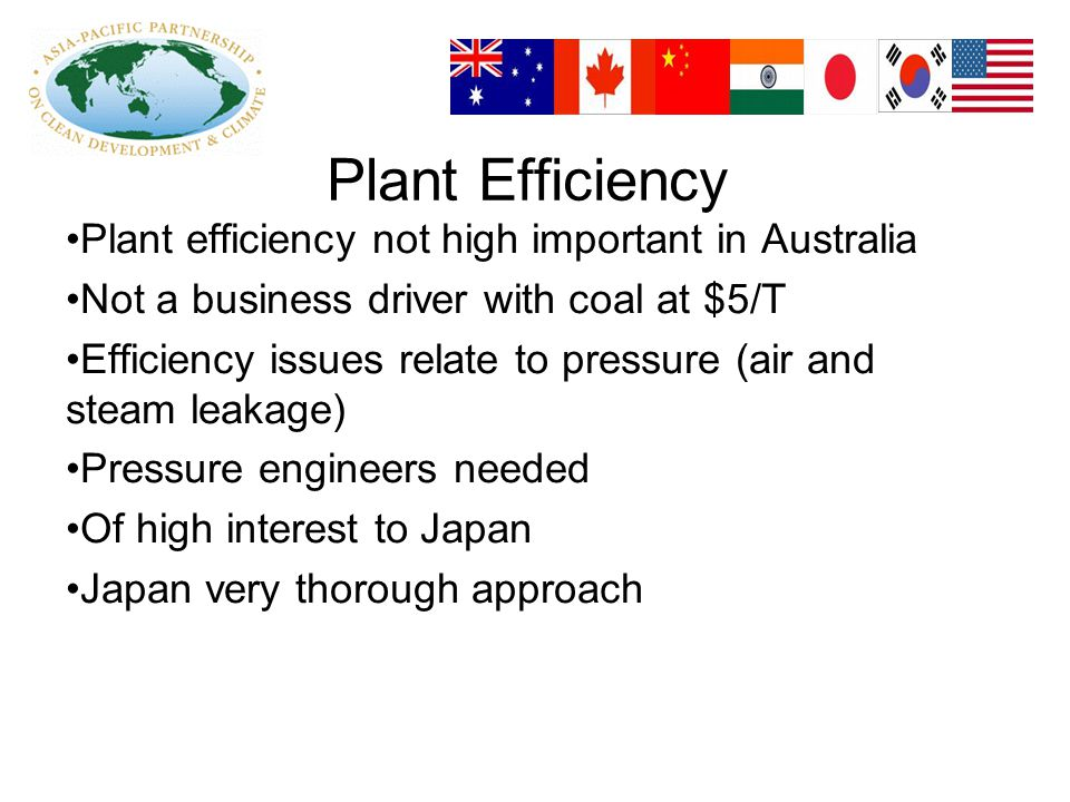 Plant Efficiency Plant efficiency not high important in Australia Not a business driver with coal at $5/T Efficiency issues relate to pressure (air and steam leakage) Pressure engineers needed Of high interest to Japan Japan very thorough approach
