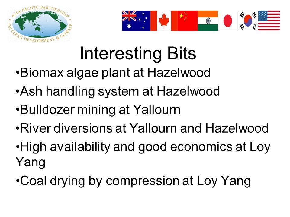 Interesting Bits Biomax algae plant at Hazelwood Ash handling system at Hazelwood Bulldozer mining at Yallourn River diversions at Yallourn and Hazelwood High availability and good economics at Loy Yang Coal drying by compression at Loy Yang