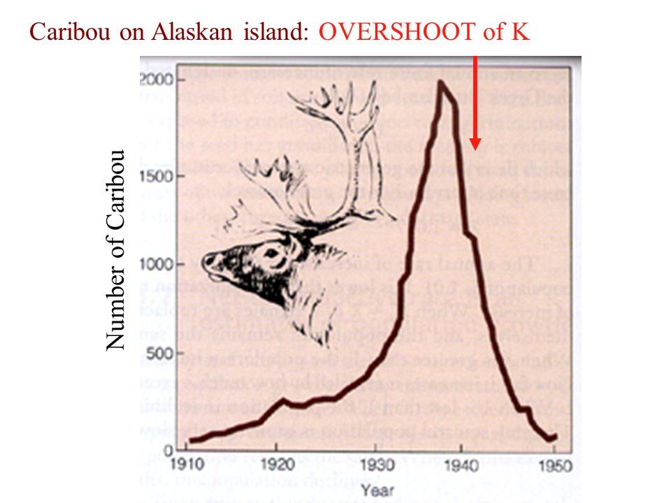 Number of Caribou Caribou on Alaskan island: OVERSHOOT of K