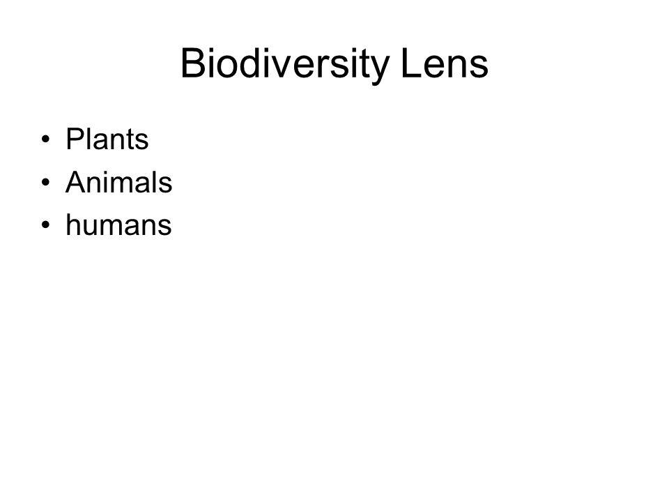 Biodiversity Lens Plants Animals humans