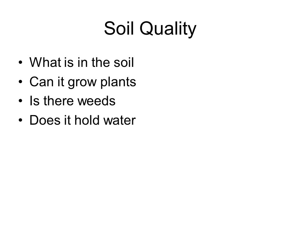 Soil Quality What is in the soil Can it grow plants Is there weeds Does it hold water
