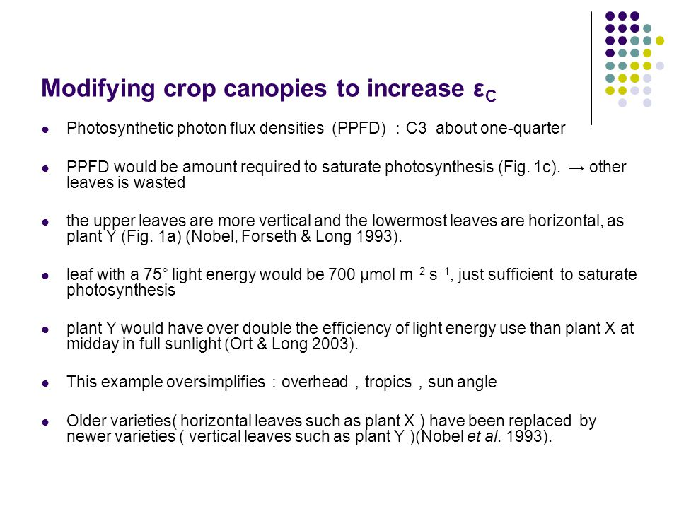 Modifying crop canopies to increase ε C Photosynthetic photon flux densities (PPFD) : C3 about one-quarter PPFD would be amount required to saturate photosynthesis (Fig.